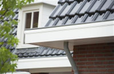 Door de gepatenteerde samenstelling is het dakrandpaneel bestand tegen weer en wind en blijft het jarenlang goed. Vandaar de zekerheid van 10 jaar garantie! Dakranden worden in de volksmond ook vaak windveer, boeiboord of boeidelen benoemd. * Werkende breedte: 200 mm, 250 mm, 300 mm en 350 mm * Dikte: 10 mm * Bevestigingsafstand: 30 cm h.o.h. * Lengte gevelpaneel:600 cm * Kleuren: 15